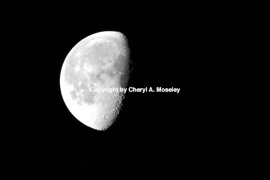 Winter Moon - ID: 9175258 © Cheryl  A. Moseley