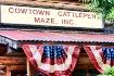 Cowtown Maze