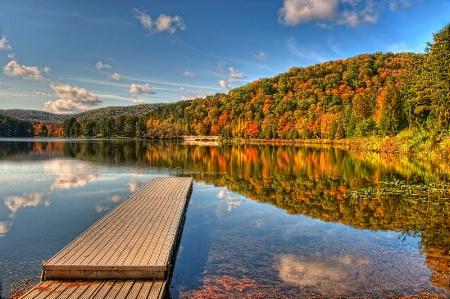 Allegany Autumn