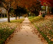 Fall Fades Fast