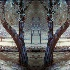 2Fox's Lair - ID: 9223768 © Debbie Hartley