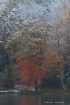 Snow and Autum Co...
