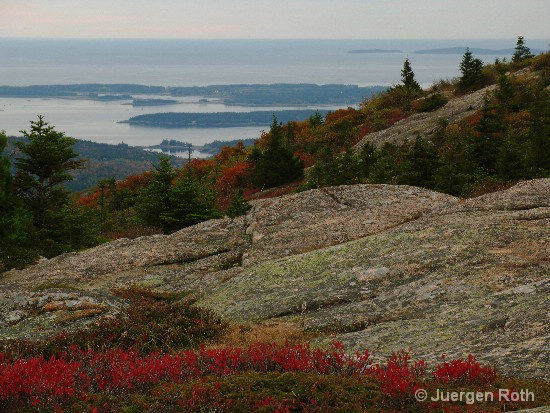 AP-007: Fall Foliage from Cadillac Mountain - ID: 9231593 © Juergen Roth