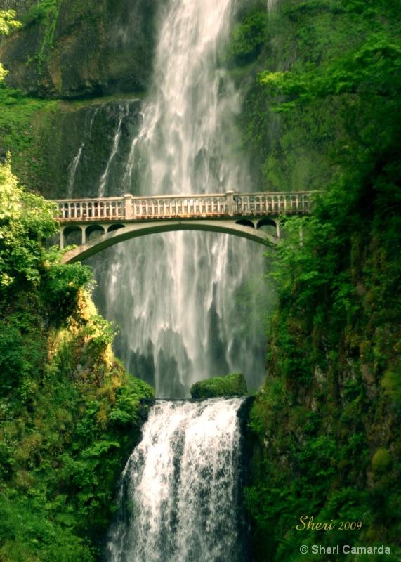 Multnomah Falls, Oregon - ID: 9233504 © Sheri Camarda