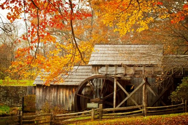 Mabry in Fall
