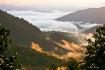 Appalachian Mist*