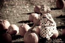 Nostalgic Pumpkin Patch