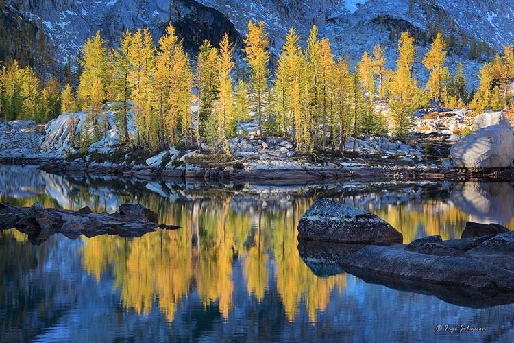 Tamarack Reflection (Enchantment Lakes)