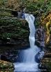 Adams Falls - 4, ...