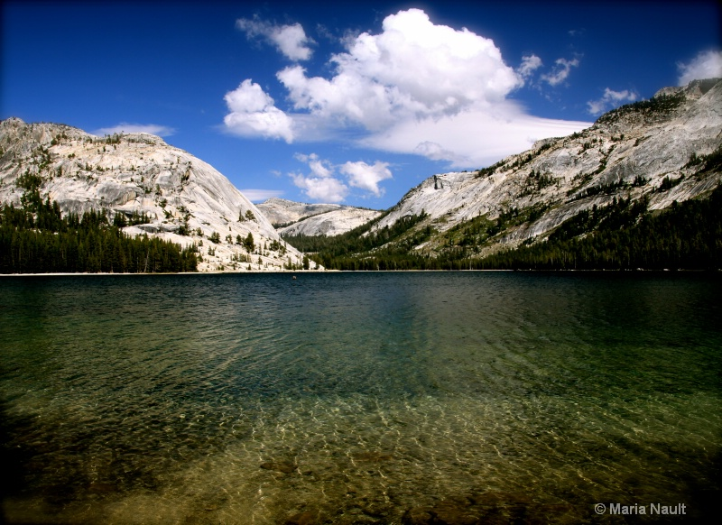 Spectacular View ~ Yosemite  - ID: 9361661 © Simply  Nonna