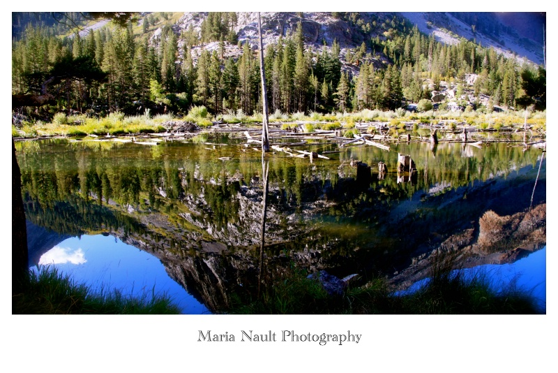 Reflections ~ Yosemite  - ID: 9361672 © Simply  Nonna