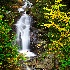 © Bob l. Peterson PhotoID # 9383681: Big falls, Pisgah National Forest