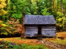 Cabin in the Dell      111309