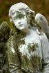 Lychen Angel