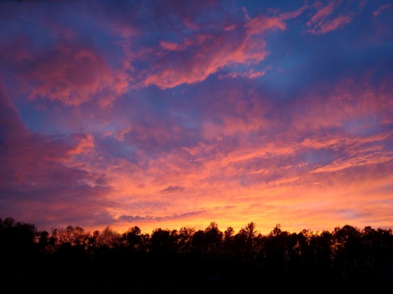Sunset from my Yard - ID: 9428037 © Theresa Marie Jones