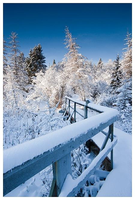 Winter Bridge, Cypress Hills SK - ID: 9500301 © Jim D. Knelson