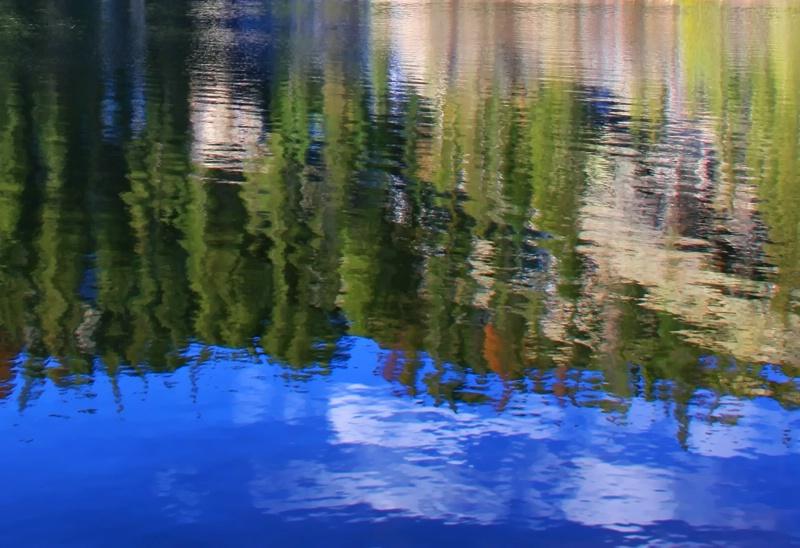 Bear Lake Reflected