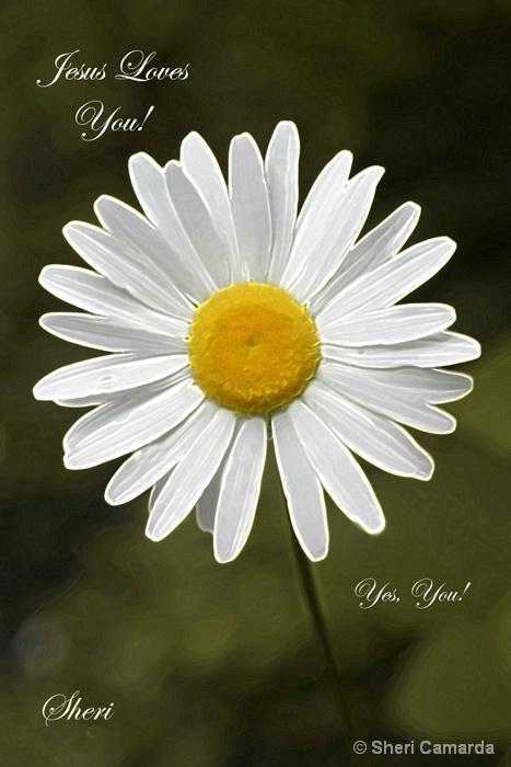 Your Not Alone! - ID: 9564386 © Sheri Camarda