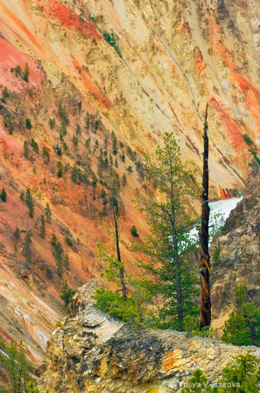 Colours of the Yellowstone River.<p> - ID: 9580992 © Yulia Basova