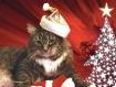 Santa's  Hel...