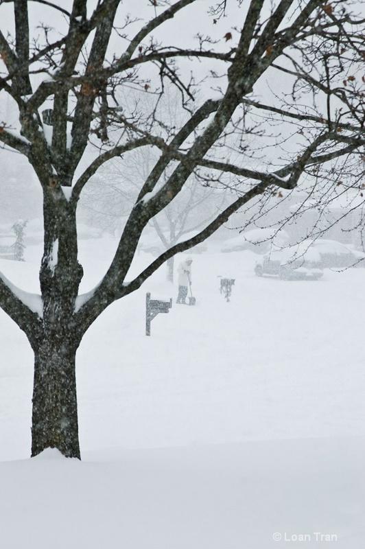 During Snow Storm... - ID: 9598565 © Loan Tran