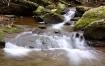Creek In Late Fal...