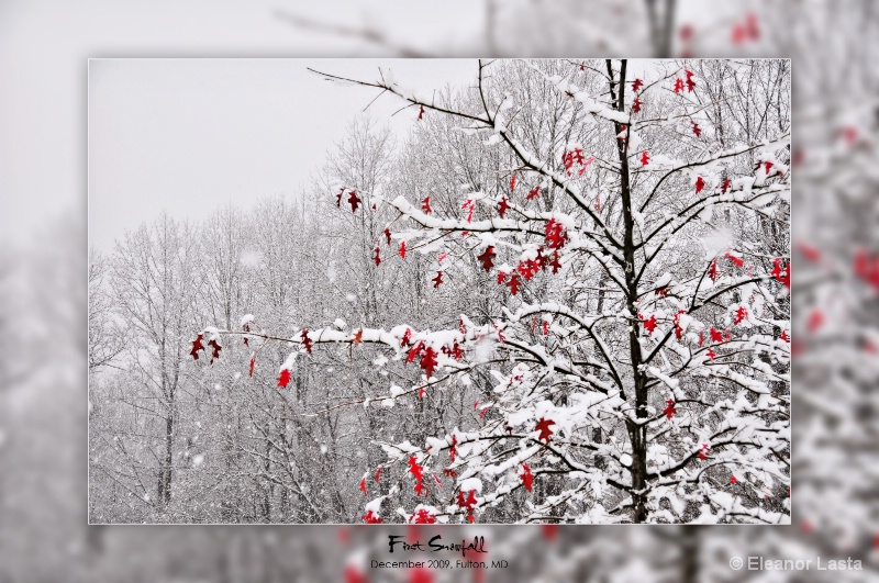 First Snowfall, Fulton, MD