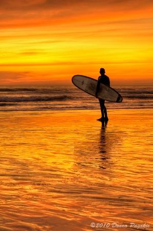 Surfing Sensations