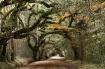 Wilderness Arch I...