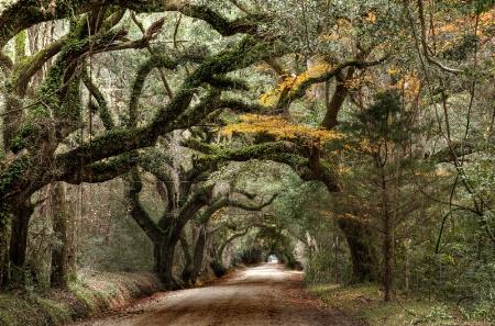 Wilderness Arch II