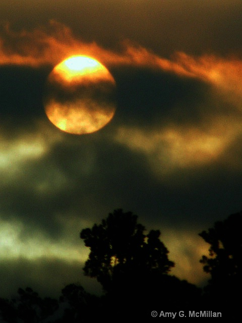 Sun Wink - ID: 9642095 © Amy G. McMillan