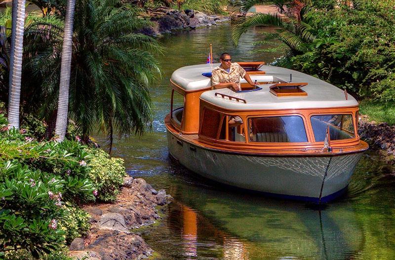 Waikoloa Village Hawaii - ID: 9667470 © Jeff Robinson
