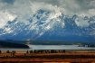 Yellowstone Natio...