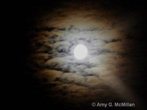 - ID: 9689129 © Amy G. McMillan