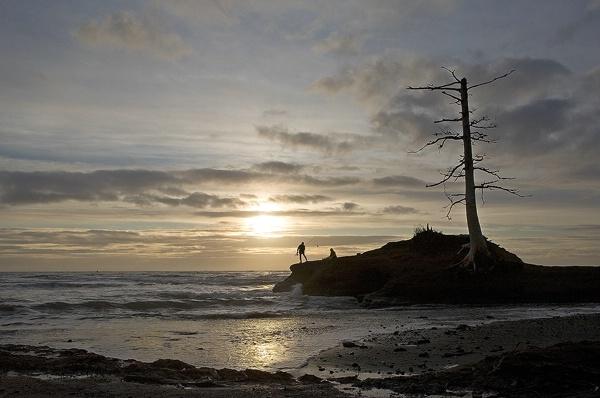 Evening Fishing - ID: 9696918 © William C. Dodge