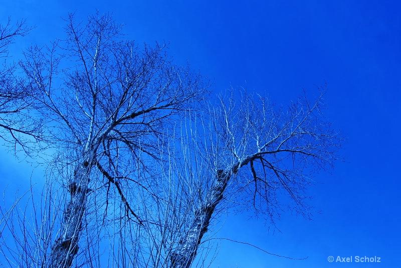 beijing winter sky - ID: 9697104 © Axel Scholz