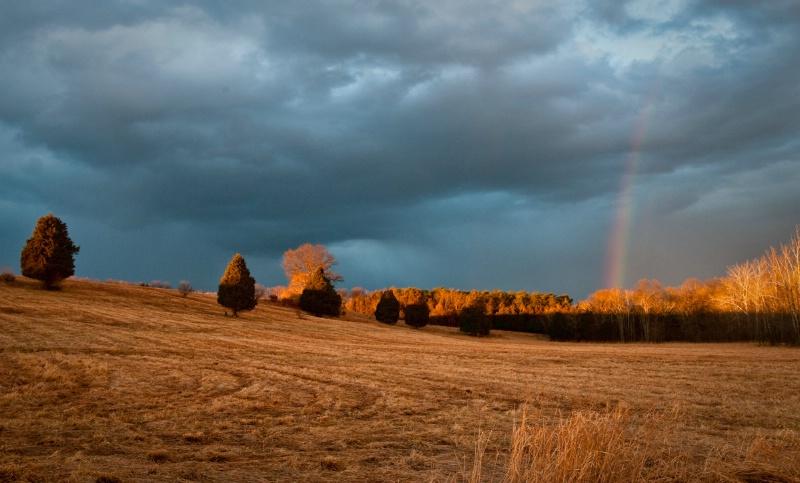 rainbowhills