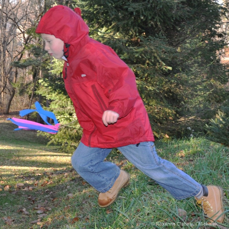 Will running at our Christmas tree farm