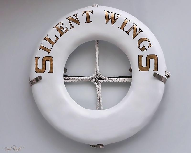 Silent Wings - ID: 9733866 © Carol Eade