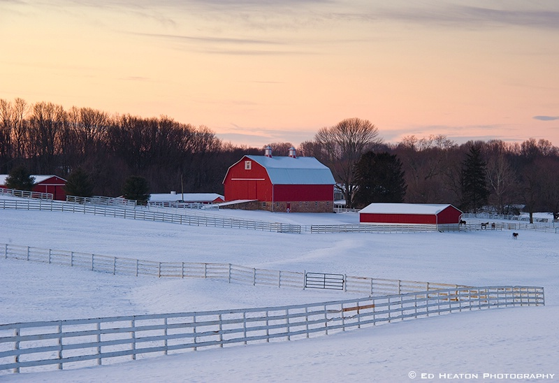 Fence & Red Barns