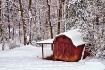 Red Shed in Winte...