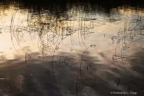Abstract Art on Lake Sammamish