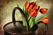 Treasured Tulips