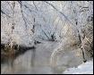 ~ Winter Wonderla...