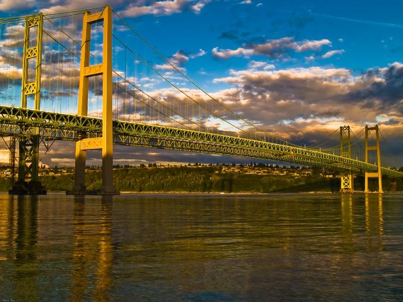 ~Tacoma Narrows Bridge's~