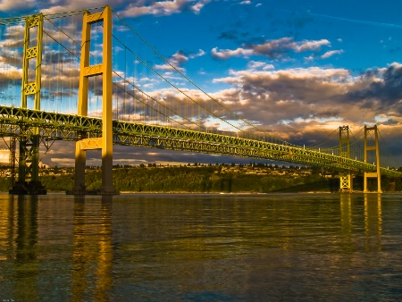 ~Tacoma Narrows Bridge's~