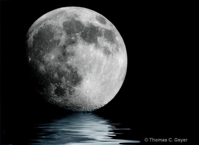 Floating - ID: 9824825 © Thomas C. Geyer