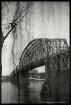 The Walking Bridg...