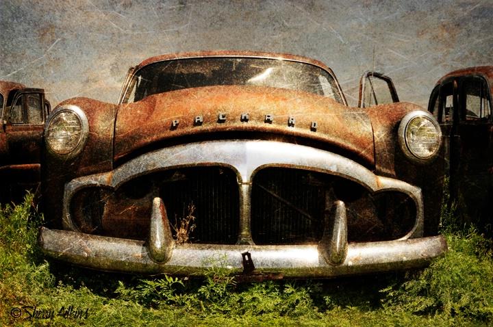 Abandoned II - ID: 9909951 © Sherry Karr Adkins