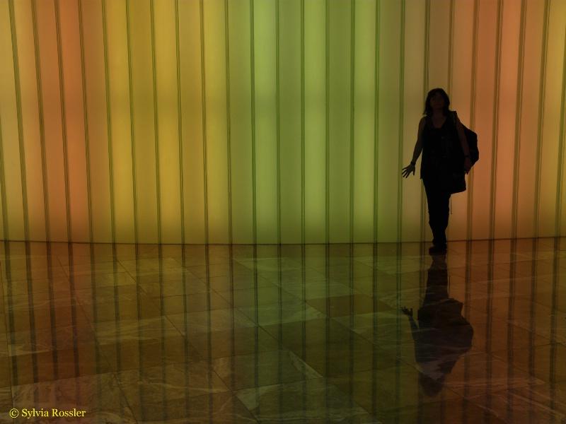 Rainbow Reflections